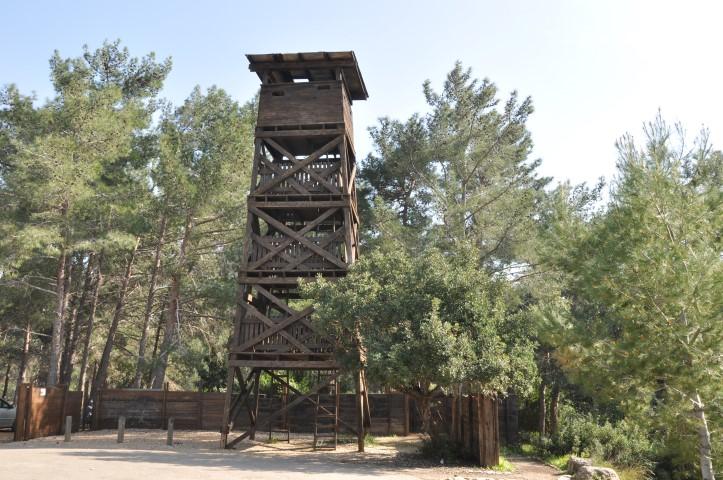 חומה ומגדל, יער חניתה (צילום: יעקב שקולניק)